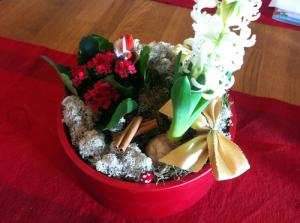 julgrupp med kanelstänger