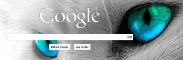 Googlekatten