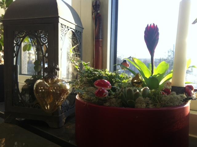 Fint med julgrupp i fönstret