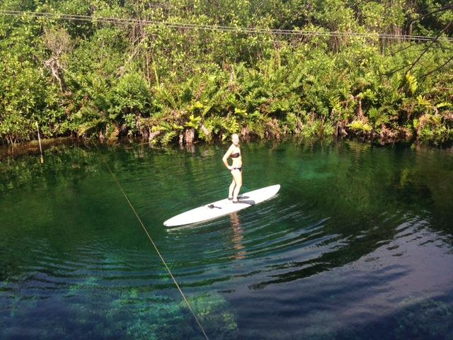 Glider runt på en surfbräda i djungeln