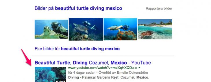 YouTubeklipp-Turtle